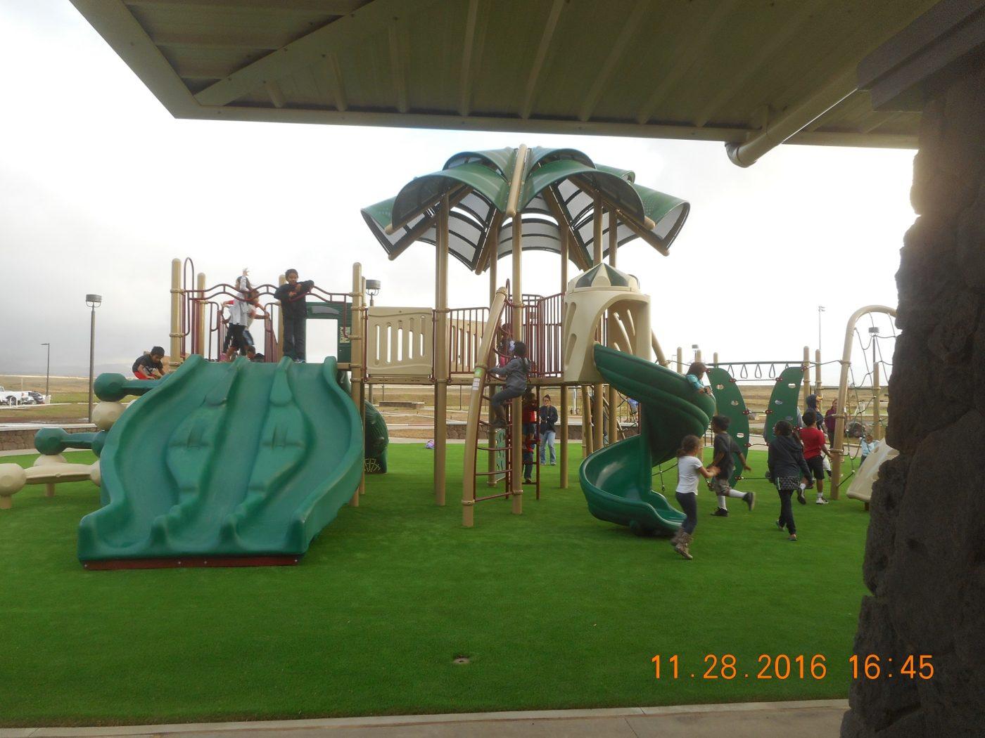Waimea-District-Park-4-e1494909911523